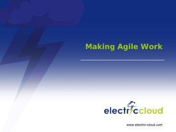ElectricCloud Presentation - AccuRev