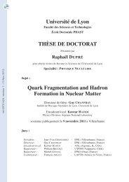 Fragmentation des Quarks et Formation des Hadrons dans la ...
