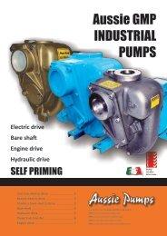GMP Industrial Pump Easy Selection Guide (pdf ... - Aussie Pumps