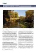 Auenwälder am Bodensee - Bodensee-Stiftung - Seite 4