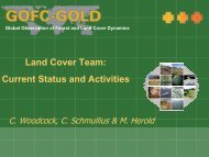 Land Cover Team: Current Status and Activities - GOFC-GOLD LC ...