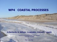 WP4 COASTAL PROCESSES