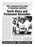 South African and Permanent Revolution - Page 3
