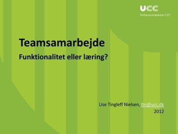 TEAM_SkoleIntra2012_Lise_Tingleff