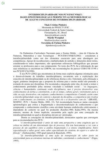 interdisciplinaridade nos pcn/em/cnm&t: bases ... - Axpfep1.if.usp.br
