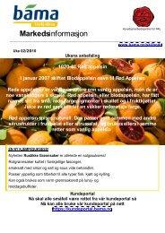 Markedsinformasjon - Bama