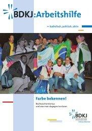 Arbeitshilfe Rechtsextremismus als PDF (756 KB) - Jugendserver ...