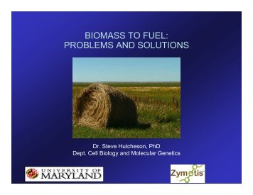 BIOMASS TO FUEL: PROBLEMS AND SOLUTIONS