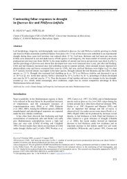 Contrasting foliar responses to drought in Quercus ilex and ... - CREAF