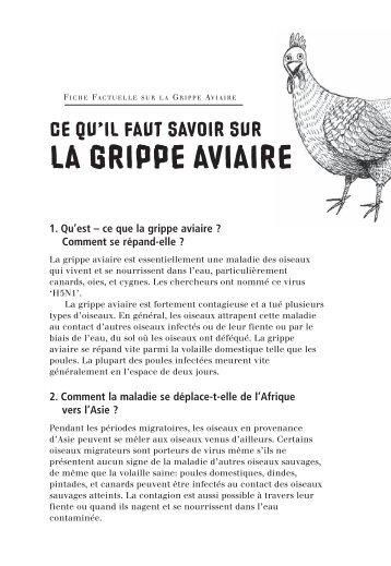 Avian Influenza Fact Sheet -- French
