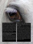 Equitazione integrata - Page 2
