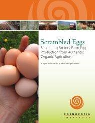 Scrambled Eggs - Cornucopia Institute
