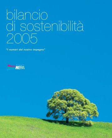bilancio di sostenibilità 2005 - Il Gruppo Hera