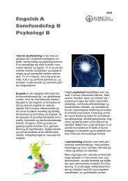 Engelsk A, samfundsfag B, psykologi B