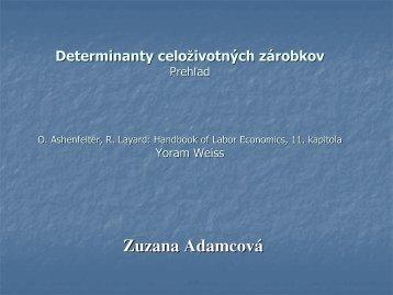 seminar 13 determinanty celozivotnych zarobkov (pdf)