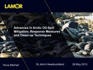 Advances in Arctic Oil-Spill Mitigation, Response Measures ... - NEIA