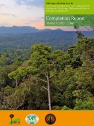 Completion Report - Tropicalforest.ch