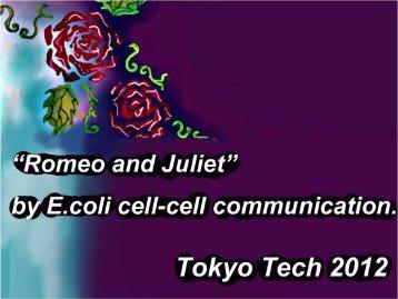 Tokyo Tech Presentation - iGEM 2012