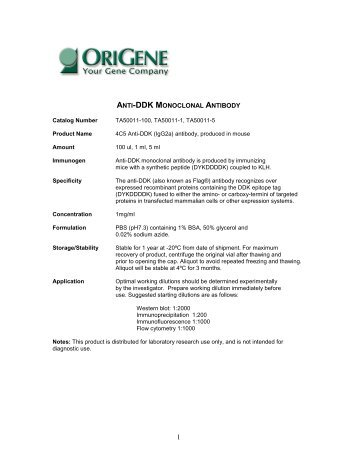 anti-ddk monoclonal antibody - OriGene
