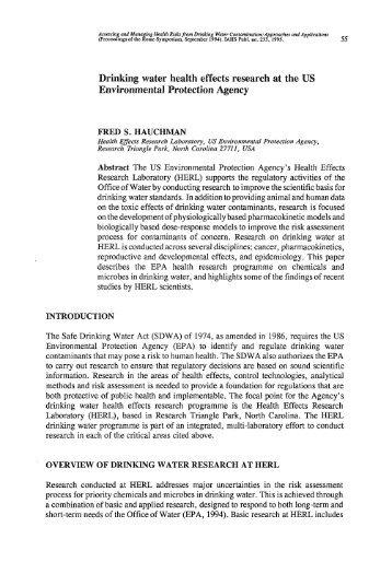 us immigration essay eksamen i engelsk 2011