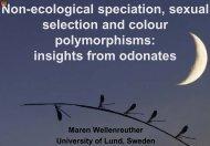 presentation here - Maren Wellenreuther