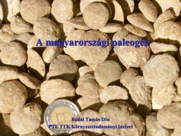 A Budai paleogén felsfels őő -- eoceoc éé nn