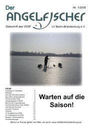 Der Angelfischer 1/2005 - VDSF LV Berlin-Brandenburg e.V.
