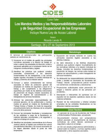 Los Mandos Medios y las Responsabilidades Laborales y de ...