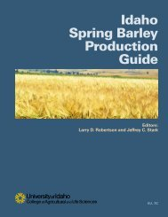 Spring Barley Production Guide - College of Agricultural and Life ...