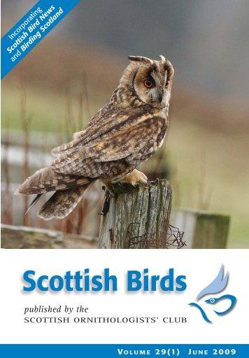 *SCOTTISH BIRDS (29) TXT AW - The Scottish Ornithologists' Club