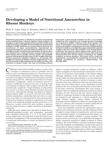 Developing a Model of Nutritional Amenorrhea in Rhesus Monkeys