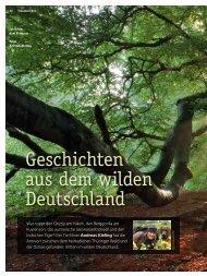 Andreas Kieling im Interview - 4-Seasons.de