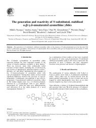 The generation and reactivity of N-substituted, stabilised a,b:g,d ...