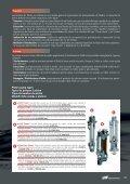 2-ball Piston Pump - Page 5