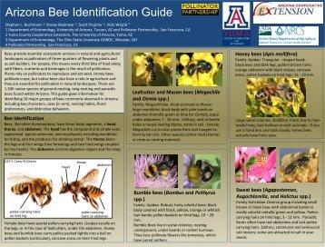 Arizona Bee Identification Guide - Pollinator Partnership