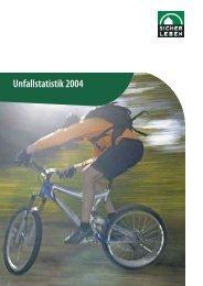 Unfallstatistik 2004