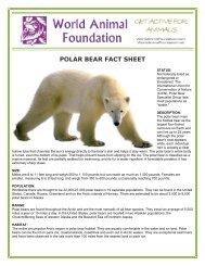 POLAR BEAR FACT SHEET - World Animal Foundation