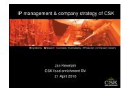 IP management & company strategy of CSK - Food Valley