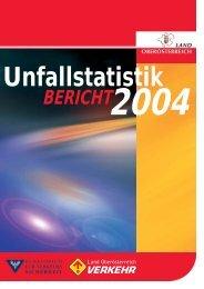 Unfallstatistik Bericht 2004