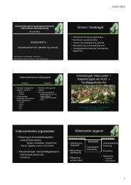 Emner i foredraget Videncentrenes organisation Videncenter opgaver