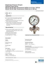 Diaphragm Pressure Gauges Stainless Steel ... - BKW Instruments