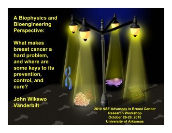 A Biophysics and Bioengineering Perspective: What makes breast ...