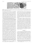 pdf 1.8MB - Gruner Group - Cornell University - Page 6