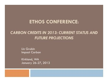carbon credits in 2013: current status and future projections