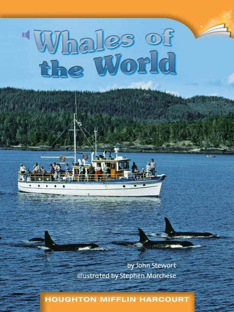 Lesson 6:Whales of the world