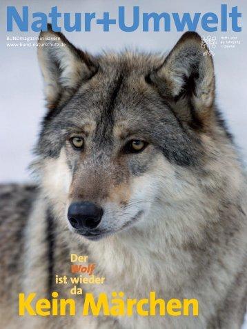 Der Wolf ist wieder da - Bund Naturschutz in Bayern eV