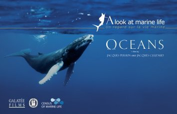 look at marine life - Census of Marine Life