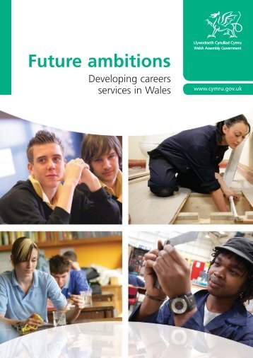 Future ambitions - International Centre for Career Development and ...