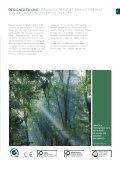 Layer PARQUET - clipperstudio.sk - Page 6