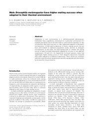 Male Drosophila melanogaster have higher mating ... - eliedolgin.com